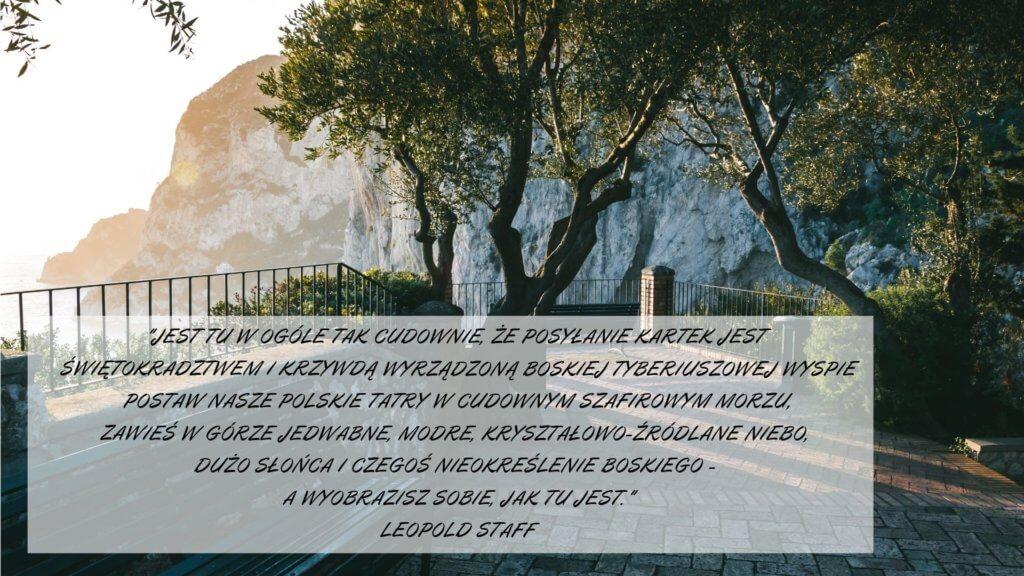 Neapol w literaturze